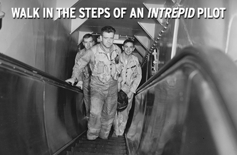 Intrepid escalator