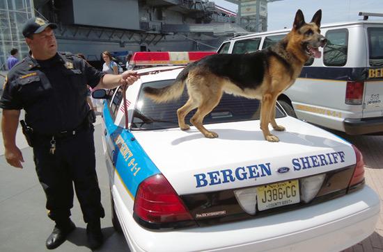 Police Appreciation Weekend